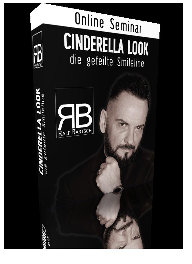 Seminar Cinderella Look
